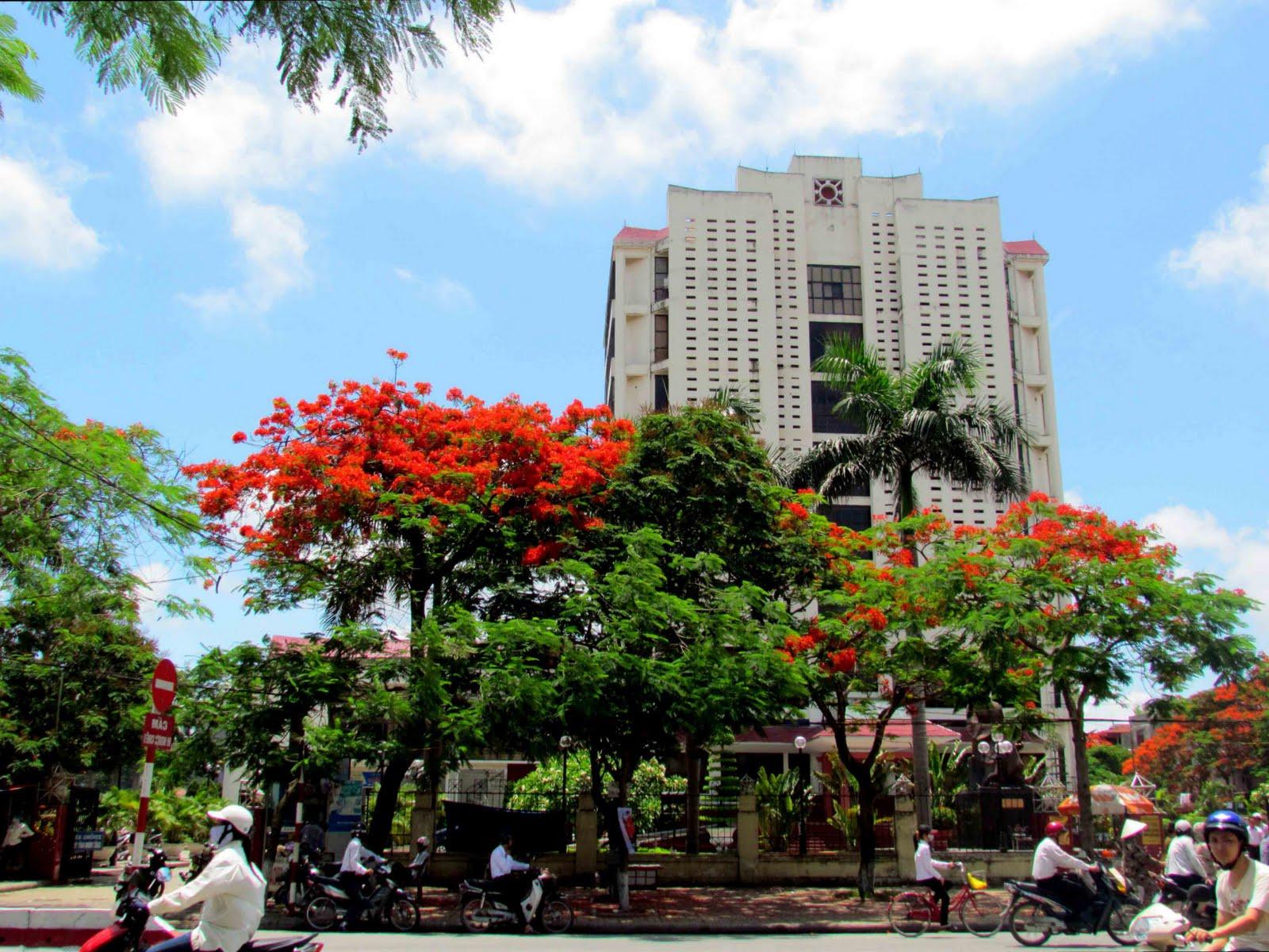 Thông tin tổng quan về Hải Phòng - thành phố hoa phượng đỏ
