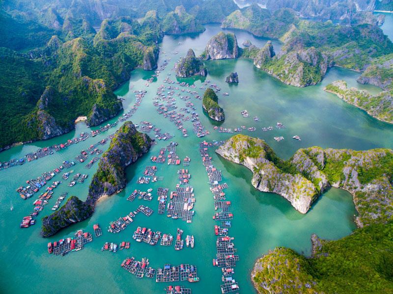 Quần đảo Cát Bà địa điểm du lịch không thể bỏ qua khi đi du lịch Hải Phòng